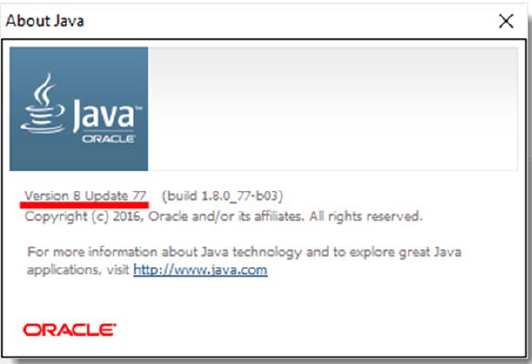 About Java Version Information