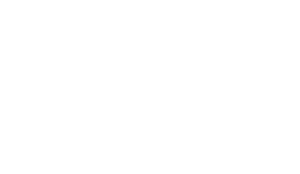 Light & Motion quote about GoEngineer and SOLIDWORKS Inspection tech support